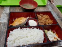 Salmon and Chicken Teriyaki Bento